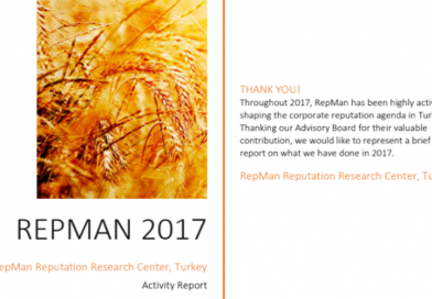 RepMan 2017 Activity Report