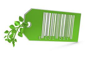 İtibar Yönetimi Açışından Yeşil Pazarlama: Örnek Olay İncelemesi